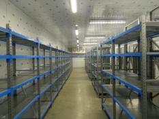 Монтаж холодильные камеры общим объемом-1100 м³ с комплектом холодильного оборудования._4