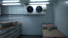 Камера хранения молочной продукции_6